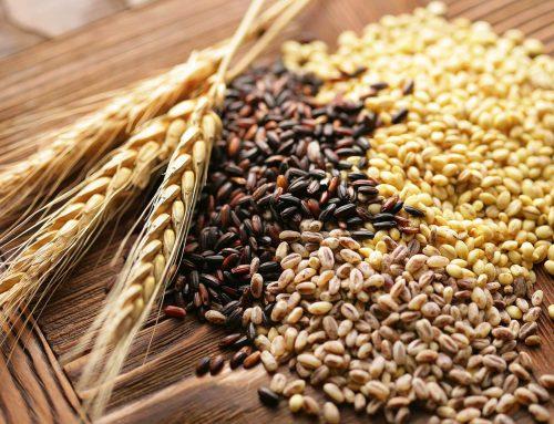 ¿Cómo identificar los alimentos integrales?